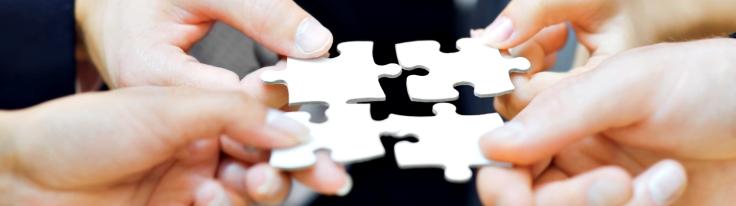 Management Consultancy Alliance